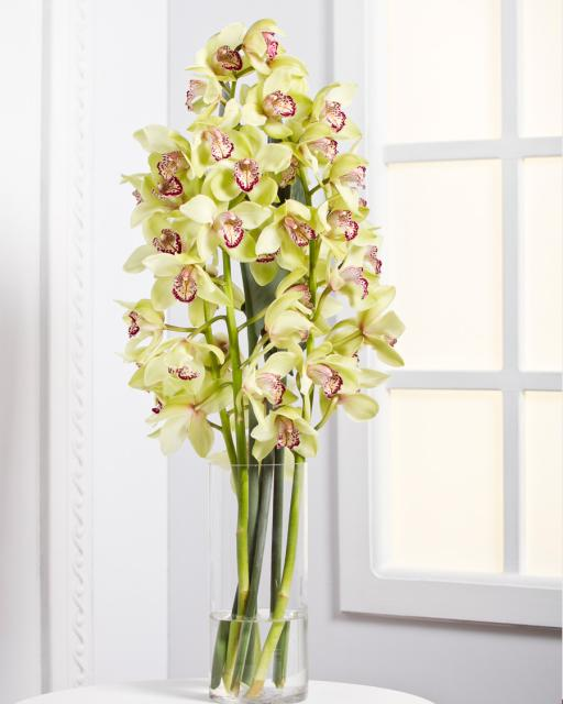 Orchids/Colour Choice